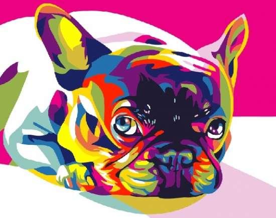 Картина по номерам 40x50 Портрет радужного мопса